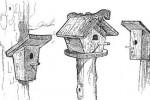 Скворечник - А, Б, В :: Заказать изготовление скворечников для птиц Вы можете по телефонам: 8 (495) 783-65-09, 8 (495) 518-64-87